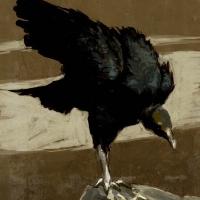 http://romeroleo.com/files/gimgs/th-26_vulture.jpg