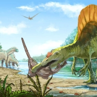 http://romeroleo.com/files/gimgs/th-31_Spinosaurus.jpg